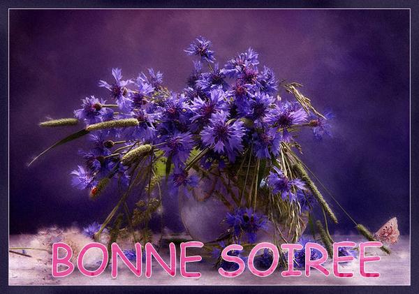 BONNE SOIREE DE DIMANCHE D89c69e1-40eaa8a