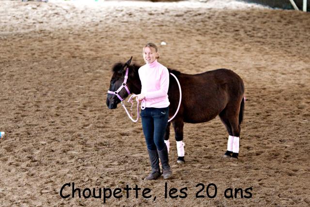 8 ans d'équitation..♥ - Page 7 _mg_5735-copie-3e26bf9