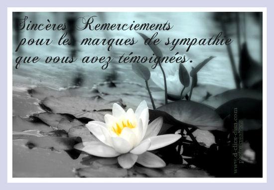 DECES Carte-de-remercie...ics-disa-3e01947